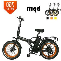 BPM 750W F15X 13AH  48V  RACK Fat Tire  Electric Bicycle Fol
