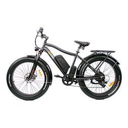 Fat Tire Electric Bike SAFECASTLE BREEZE PRO 750W Beach Snow