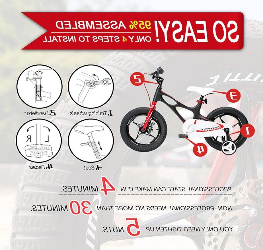 Royalbaby BMX Bike Removable