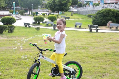 RoyalBaby CubeTube Bicycle for