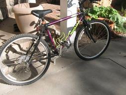 Men's raleigh peak bicycle