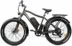 Breeze Pro Fat Tire Electric Mountain  Bike, eBike 750W, 48V